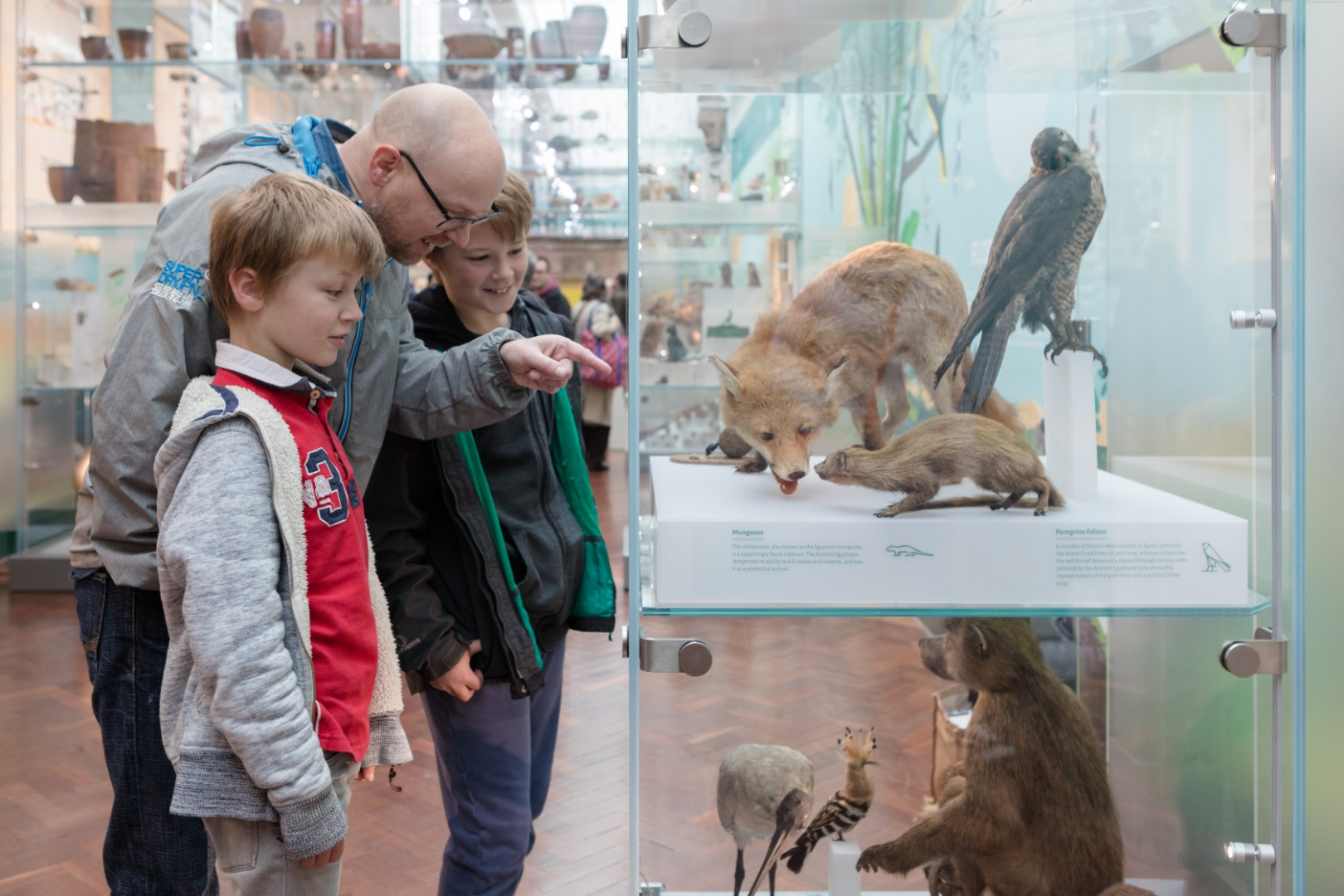Bolton Museum shortlisted for national Family Friendly Museum Award