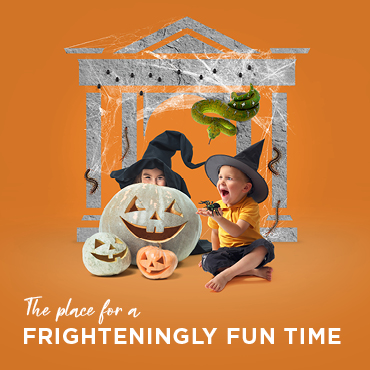 Come for Creepy Crawly Capers at Market Place This Halloween