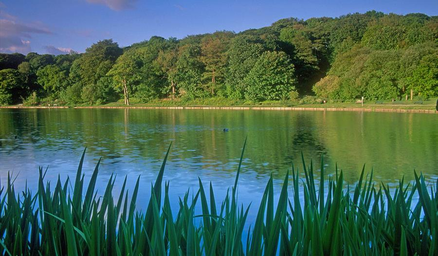 Walk Through Chorley's Parks with Bolton Ramblers